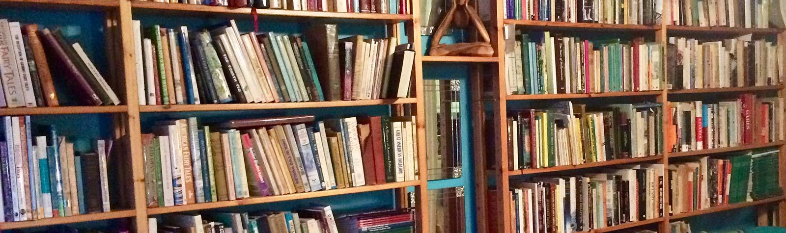 Books shelves banner